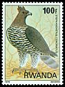 Cl: Crowned Hawk-Eagle (Stephanoaetus coronatus) SG 963 (1980) 240