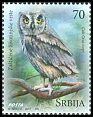 Cl: European Scops-Owl (Otus scops) new (2017)