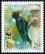 Cl: Black Woodpecker (Dryocopus martius) SG 290 (2007)  [4/10]
