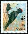 Cl: Black Woodpecker (Dryocopus martius)(Repeat for this country)  SG 292 (2007)