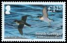 Cl: South Georgia Diving-Petrel (Pelecanoides georgicus)(Endemic or near-endemic) (I do not have this stamp)  SG 536 (2011)  [7/16]