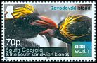 Cl: Macaroni Penguin (Eudyptes chrysolophus)(Repeat for this country)  SG 679 (2016)  [10/25]