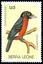 Cl: Double-toothed Barbet (Lybius bidentatus) SG 1143 (1988) 15