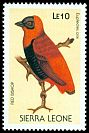 Cl: Orange Bishop (Euplectes franciscanus) SG 1145 (1988) 30