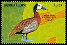 Cl: White-faced Whistling-Duck (Dendrocygna viduata) SG 1501 (1990) 40