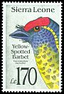 Cl: Yellow-spotted Barbet (Buccanodon duchaillui) SG 1832 (1992)