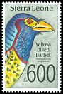 Cl: Yellow-billed Barbet (Trachyphonus purpuratus) SG 1836 (1992)