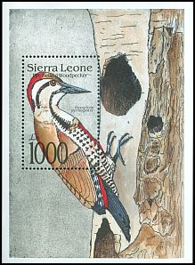 Cl: Fire-bellied Woodpecker (Dendropicos pyrrhogaster) SG 1837a (1992)