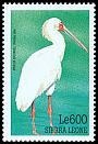 Cl: African Spoonbill (Platalea alba)(Repeat for this country)  SG 3084 (1999)
