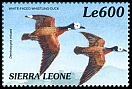 Cl: White-faced Whistling-Duck (Dendrocygna viduata)(Repeat for this country)  SG 3094 (1999)