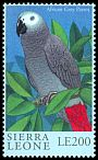 Cl: Grey Parrot (Psittacus erithacus)(Repeat for this country)  SG 3325 (2000)