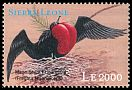 Cl: Magnificent Frigatebird (Fregata magnificens)(Out of range)  SG 3349 (2000)