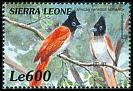Cl: African Paradise-Flycatcher (Terpsiphone viridis) SG 3112 (1999)