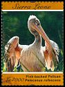 Cl: Pink-backed Pelican (Pelecanus rufescens)(I do not have this stamp)  SG 4789a (2011)