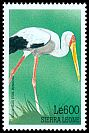 Cl: Yellow-billed Stork (Mycteria ibis) SG 3092 (1999)