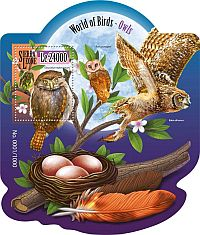 Cl: Red-chested Owlet (Glaucidium tephronotum)(I do not have this stamp)  new (2015)