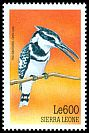Cl: Pied Kingfisher (Ceryle rudis) SG 3083 (1999)