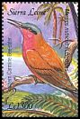 Cl: Southern Carmine Bee-eater (Merops nubicoides)(Out of range)  SG 4100f (2003)