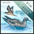 Cl: Wedge-tailed Shearwater (Puffinus pacificus)(not catalogued)  (2013)  [9/13]