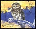 Cl: Solomon Hawk-Owl (Ninox jacquinoti granti)(Endemic or near-endemic)  SG 1080b3 (2004)  [3/28]