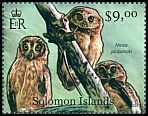 Cl: Solomon Hawk-Owl (Ninox jacquinoti)(Endemic or near-endemic) (not catalogued)  (2012)  [8/7]