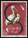 Cl: Pink-backed Pelican (Pelecanus rufescens) SG 337 (1959) 8