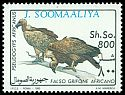 Cl: White-backed Vulture (Gyps africanus)(not catalogued)  (1993)