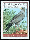 Cl: Pale Chanting-Goshawk (Melierax canorus)(not catalogued)  (1999)