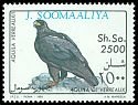 Cl: Verreaux's Eagle (Aquila verreauxii)(not catalogued)  (1993)