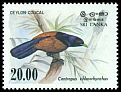 Cl: Green-billed Coucal (Centropus chlororhynchus) SG 830 (1983) 160