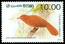 Cl: Orange-billed Babbler (Turdoides rufescens) SG 988 (1987) 30