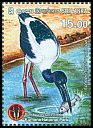 Cl: Black-necked Stork (Ephippiorhynchus asiaticus)(Repeat for this country)  new (2016)