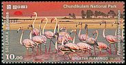 Cl: Greater Flamingo (Phoenicopterus roseus) SG 2349 (2016)