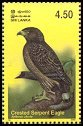 Cl: Crested Serpent-Eagle (Spilornis cheela) SG 1661 (2003)