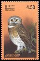 Cl: Jungle Owlet (Glaucidium radiatum) SG 1663 (2003)
