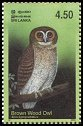 Cl: Brown Wood-Owl (Strix leptogrammica) SG 1660 (2003)