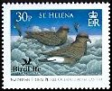 Cl: Band-rumped Storm-Petrel (Oceanodroma castro)(Repeat for this country)  SG 1029 (2007)