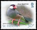Cl: Java Sparrow (Padda oryzivora)(Repeat for this country)  SG 1239 (2015)