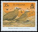 Cl: Brown Noddy (Anous stolidus) SG 1055 (2008)