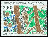 Cl: Northern Flicker (Colaptes auratus) SG 676 (1992)