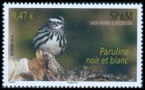 Cl: Black-and-white Warbler (Mniotilta varia) <<Paruline noir et blanc>>  SG 1105 (2010)