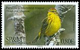Cl: Palm Warbler (Dendroica palmarum) <<Paruline &agrave; couronne rousse>>  new (2018)
