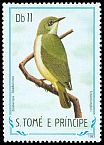 Cl: Sao Tome White-eye (Zosterops ficedulinus) <<Tchinlintchili>> (not catalogued)  (1983)