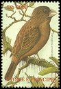 Cl: Sao Tome Grosbeak (Neospiza concolor)(not catalogued)  (2002)  [5/59]