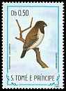 Cl: Bronze Mannikin (Spermestes cucullatus) <<Queblan-canan>> (not catalogued)  (1983)