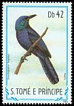 Cl: Chestnut-winged Starling (Onychognathus fulgidus) <<Pastro>> (not catalogued)  (1983)