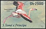 Cl: Greater Flamingo (Phoenicopterus roseus) new (2013)  [9/9]