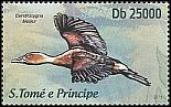 Cl: Fulvous Whistling-Duck (Dendrocygna bicolor) new (2013)