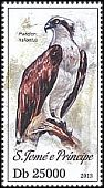 Cl: Osprey (Pandion haliaetus) new (2013)
