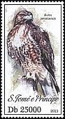 Cl: Red-tailed Hawk (Buteo jamaicensis)(Out of range)  new (2013)